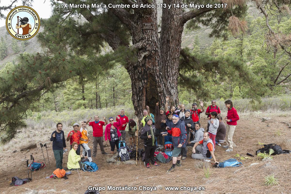 Reunión y descanso en el Pino Choya - PR-TF 86, Senderos de Arico, Tenerife