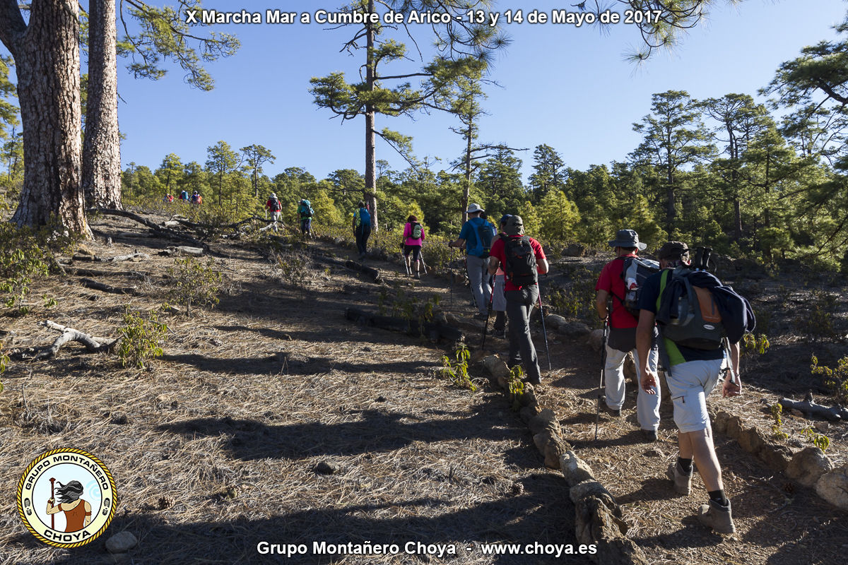 Llegando a Fuente del Llano - PR-TF 86, Senderos de Arico, Tenerife